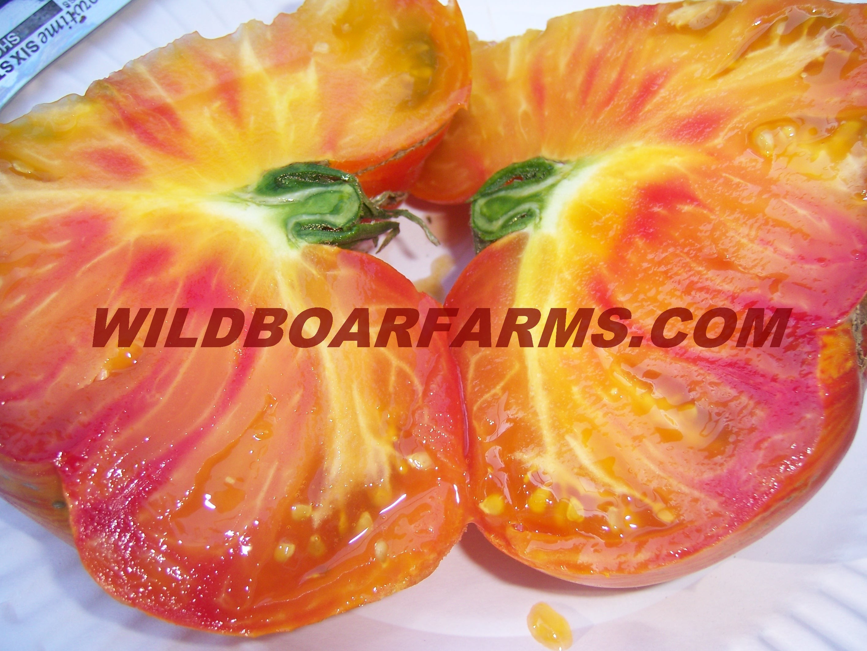 Wild Boar Farms Tomatoes 39