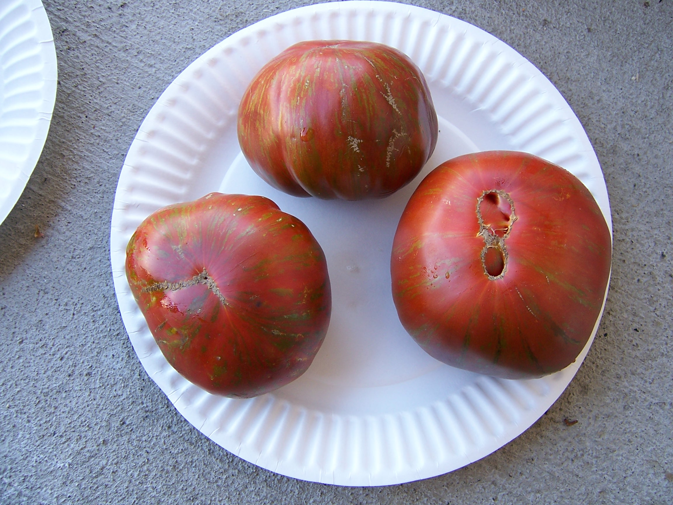 Wild Boar Farms Tomatoes 58