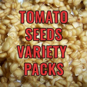 Tomato Seed Variety Packs