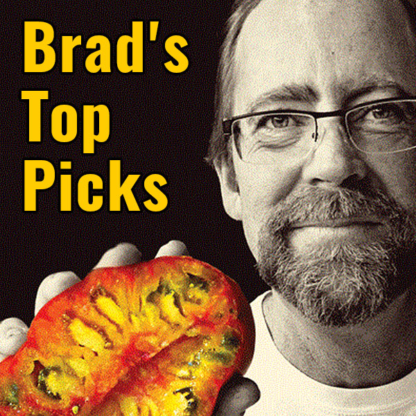 Brad's Top Picks, Old Fashioned Heirloom Tomatoes